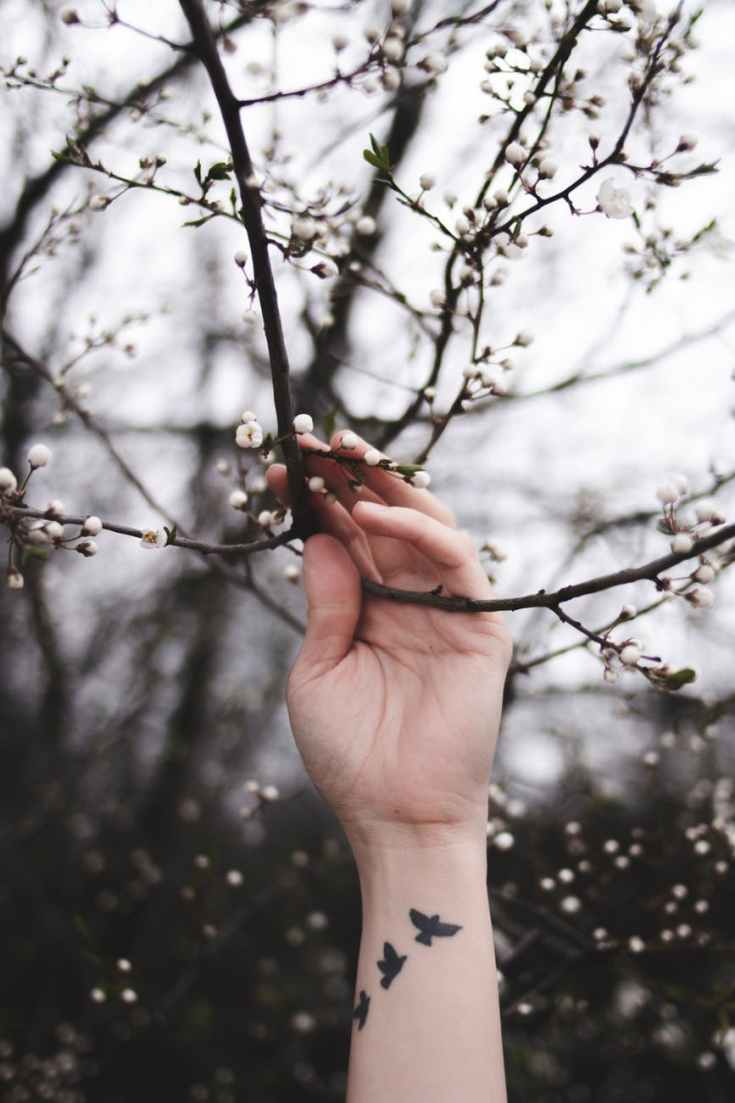 person holding twig
